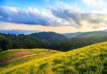 Cung đường trekking tuyệt đẹp của Tà Năng - Phan Dũng